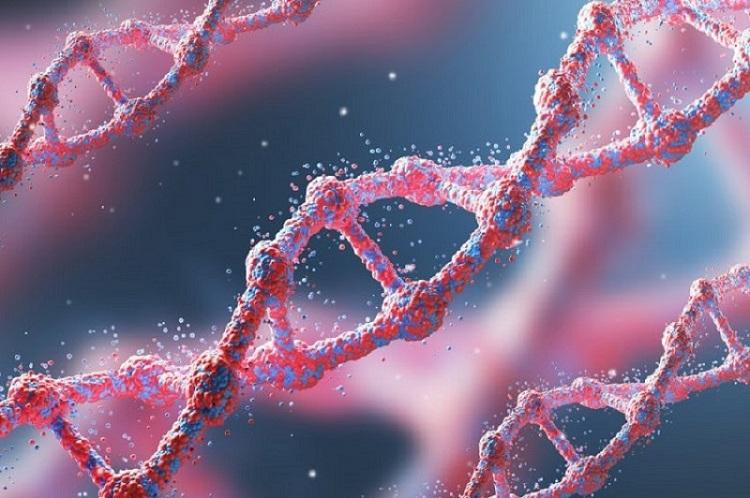 Photo of დიაგნოსტირების ახალი მეთოდით სიმსივნეს მის ჩამოყალიბებამდე აღმოაჩენენ