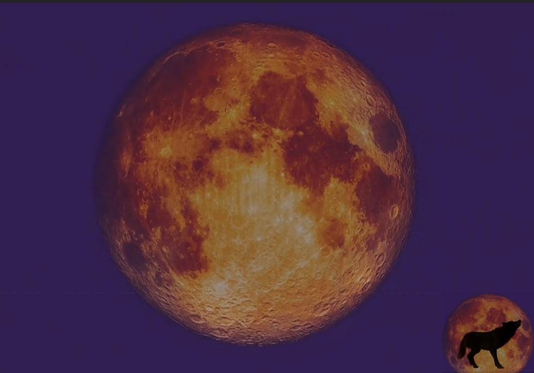"""Photo of """"სუპერწითელი"""" ანუ """"მგლის"""" მთვარის სრული დაბნელების ვიდეო"""