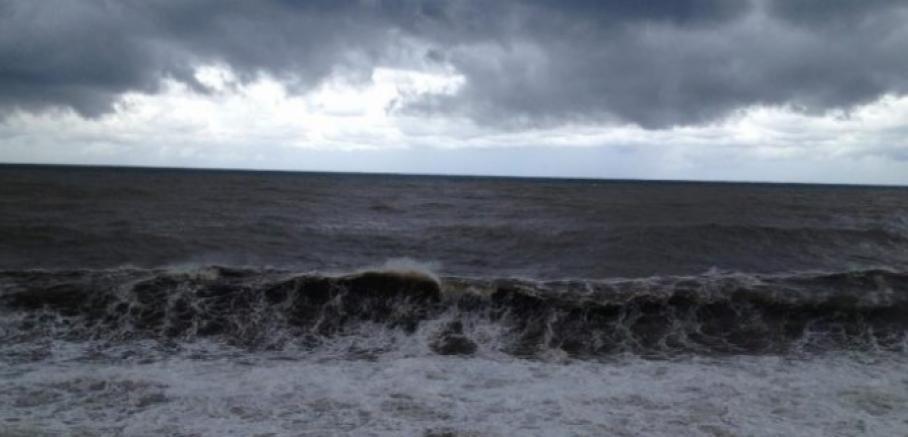 Photo of ზღვაში ძაღლის გადასარჩენად შესული მამაკაცი დაიხრჩო (ვიდეო)