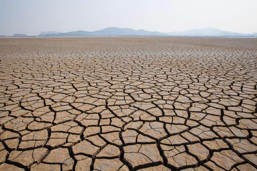 Photo of კაცობრიობამ დედამიწის რესურსების 2019 წლის ნორმა უკვე გახარჯა