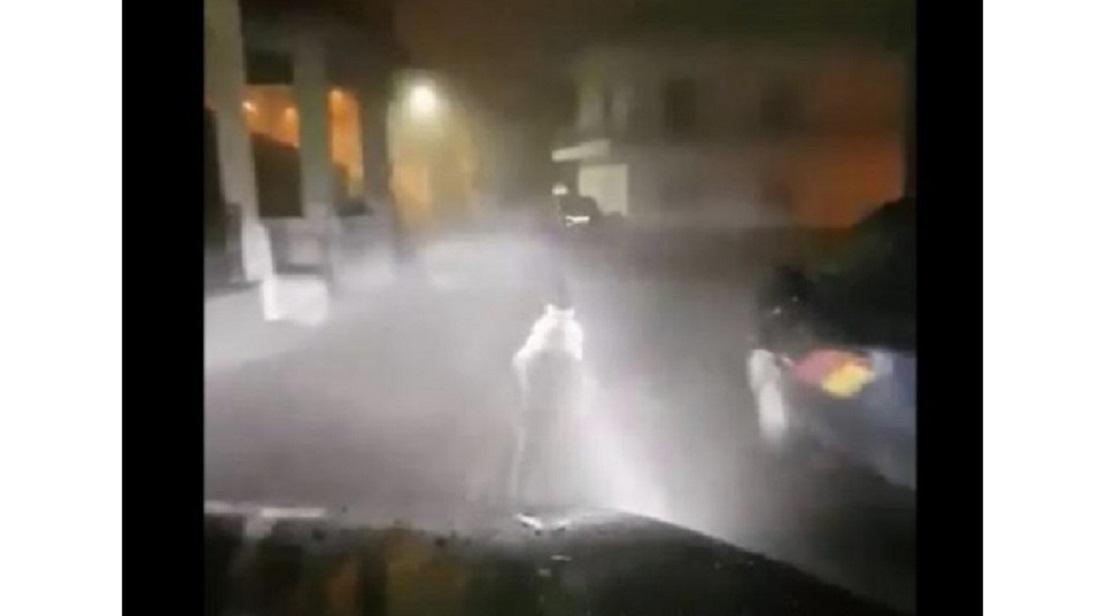 Photo of როგორ მისდევდნენ დათვს საბერძნეთის ქუჩებში (ვიდეო)