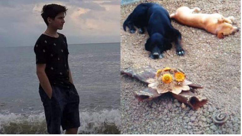 Photo of ძაღლები ბობი და შაკო ყოველდღე მიდიან 16 წლის ლუკა ფოფხაძის საფლავზე (ფოტო)