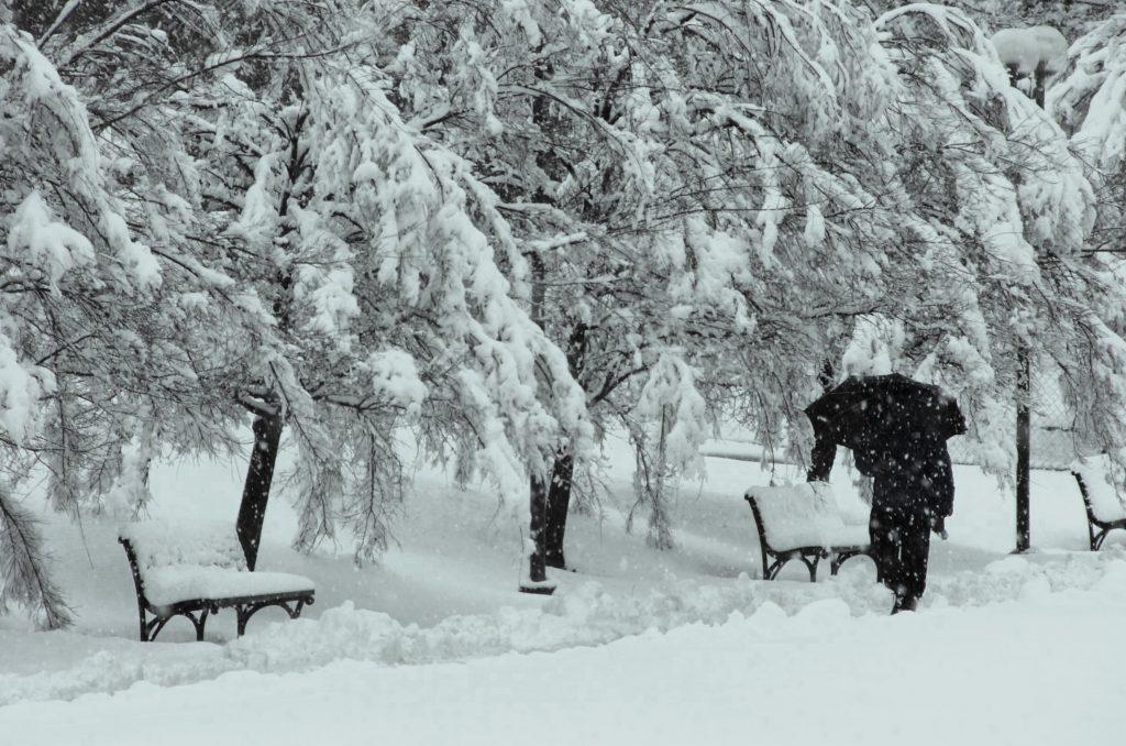 Photo of სად გაქრა ზამთარი, რატომ აღარ თოვს თბილისში და რა პრობლემები შეიძლება მოგვიტანოს არასეზონურმა ამინდებმა?