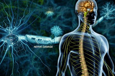 Photo of ჩვენი დროის დაავადება: რა უნდა ვიცოდეთ გაფანტული სკლეროზის შესახებ