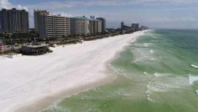 Photo of კორონავირუსი აშშ-ში – უკაცრიელი პლაჟები ფლორიდაში (ვიდეო)