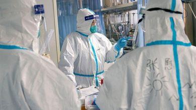"Photo of ჩინეთში COVID-19-ით დაავადებულთა სამკურნალოდ დათვის ნაღველს გამოიყენებენ – ""ბიბისი"""