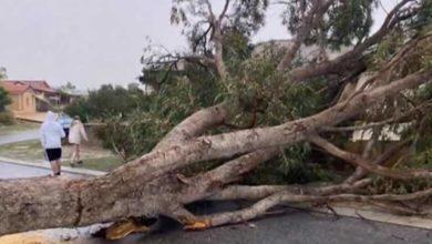 Photo of ავსტრალიაში 2 დღეა დამანგრეველი ქარიშხალი მძვინვარებს (ვიდეო)