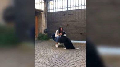 Photo of როგორ შეეგება იტალიაში 56-დღიანი განშორების შემდეგ ძაღლი ახალგაზრდა ქალს (ვიდეო)