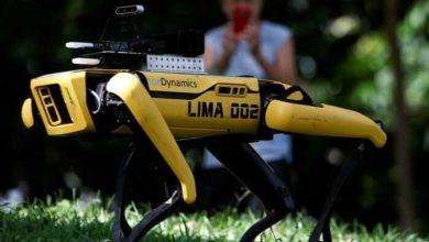 Photo of სინგაპურის პარკებში სოციალურ დისტანციას რობოტი-ძაღლები აკონტროლებენ (ვიდეო)