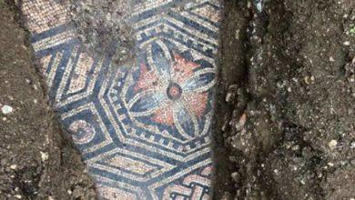 Photo of იტალიაში ვენახის ქვეშ უძველესი რომაული მოზაიკის იატაკი აღმოაჩინეს (ფოტო)
