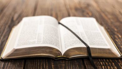 Photo of ბიბლიის რომელ მუხლებს ეძებენ ყველაზე ხშირად და რას გვეუბნებიან ისინი მაძიებლებზე?