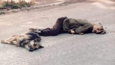 """Photo of """"ბერძენის ბიჭს გადაეფარა"""" – აფხაზეთის ომის შემზარავი ისტორია და ფოტო"""