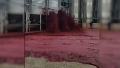 Photo of ესპანეთში ძვირადღირებული წითელი ღვინით ქარხანა დაიტბორა (ვიდეო)