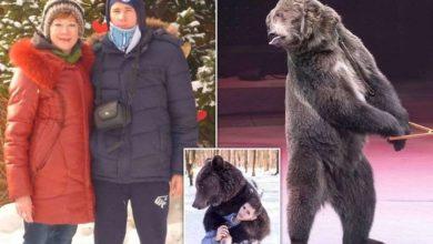 Photo of რუსეთში დათვმა მოკლა ცირკის თანამშრომელი, რომელიც პირბადის გამო ვერ იცნო