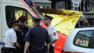 Photo of ავსტრიაში დააკავეს ქალი, რომელიც აცხადებს, რომ სამი შვილი მოკლა