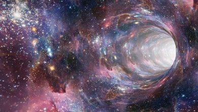 Photo of იტალიელმა მეცნიერებმა ადამიანის ტვინსა და კოსმოსს შორის საოცარი მსგავსება აღმოაჩინეს