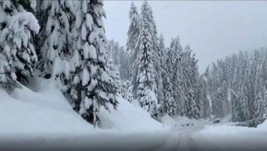 Photo of იტალია, არაბა: 2 მეტრზე მეტი თოვლი მოვიდა ბელუნოს დოლომიტებში (ვიდეო)