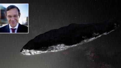Photo of ჰარვარდის პროფესორის განცხადებით, უცხოპლანეტელები 2017 წელს უკვე გვეწვივნენ