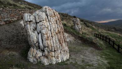 Photo of საბერძნეთში 20 მილიონი წლის წინათ გაქვავებული ხე აღმოაჩინეს (ვიდეო)