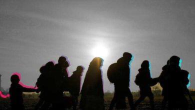 Photo of რამდენი ჩვენი თანამემამულე ცხოვრობს საბერძნეთში? – სტატისტიკური მონაცემები