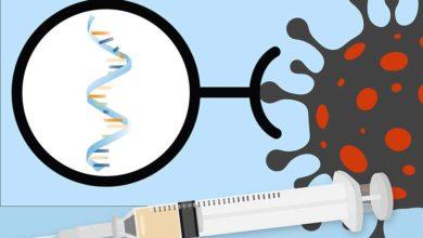 Photo of შეცვლის თუ არა COVID-19-ის საწინააღმდეგო ვაქცინა ადამიანის გენეტიკურ კოდს? – პროფესიონალების განმარტება