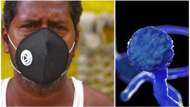 """Photo of """"შავი სოკო"""" – რას წარმოადგენს დაავადება მუკორმიკოზი, რომელიც ინდოეთში გავრცელდა"""