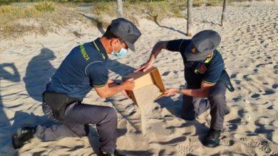 Photo of სარდინიის სანაპიროდან ქვიშისა და ნიჟარების მოპარვის გამო 40-ზე მეტ ადამიანს დაჯარიმება ემუქრება
