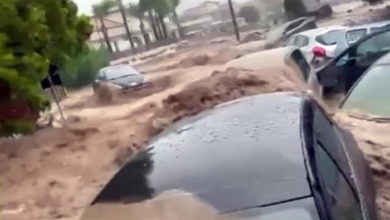 Photo of იტალიის სამხრეთი ისევ დაზარალდა უამინდობის გამო, ერთი ადამიანი დაიღუპა (ვიდეო)